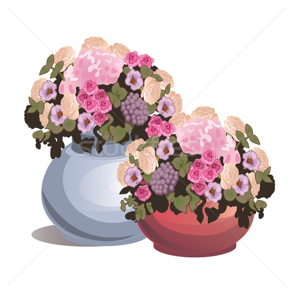 Set potted flowers isolated on white background. Ideas for gifts or interior design. Vector cartoon  Stock photo © Lady-Luck