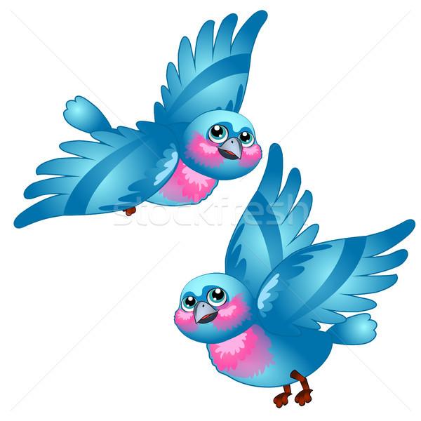 Funny cartoon niebieski ptaków odizolowany biały Zdjęcia stock © Lady-Luck