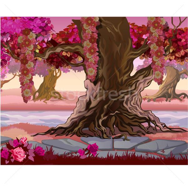 妖精 森林 ピンク 木 ファンタジー 自然 ストックフォト © Lady-Luck