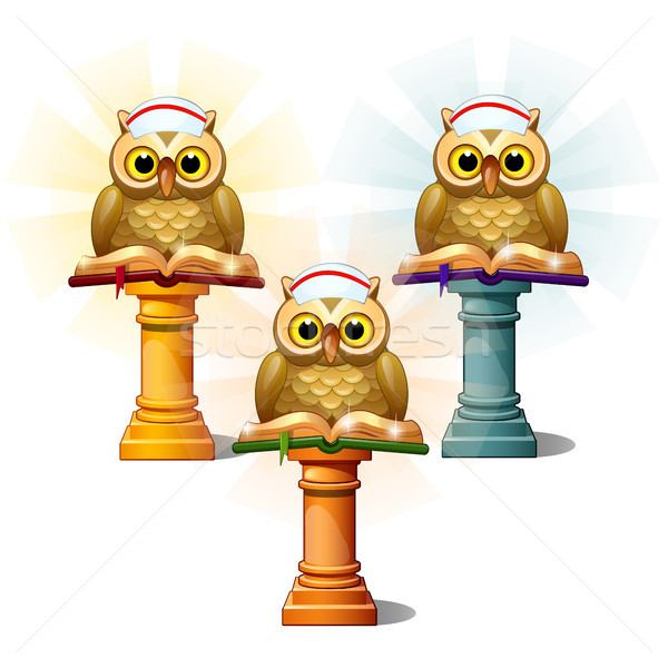 Three statues of owls with books on pedestals, isolated on white background. Cartoon vector close-up Stock photo © Lady-Luck