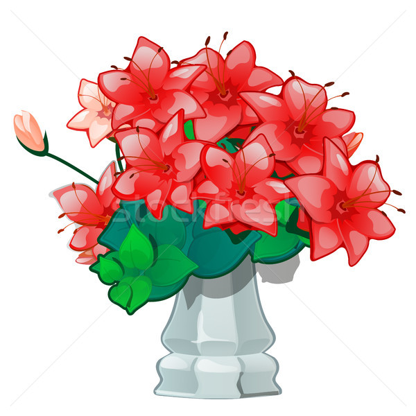Red flowers in a vintage ceramic vase isolated on white background. Vector illustration. Stock photo © Lady-Luck