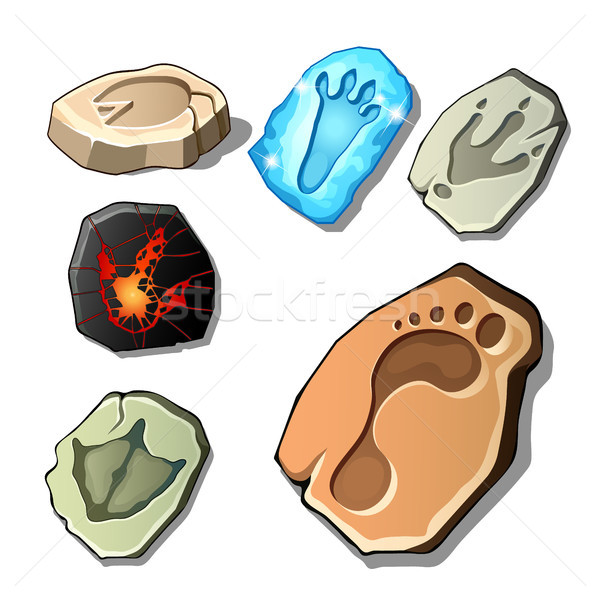 A set of footprints of fossil animals and man isolated on white background. Vector cartoon close-up  Stock photo © Lady-Luck