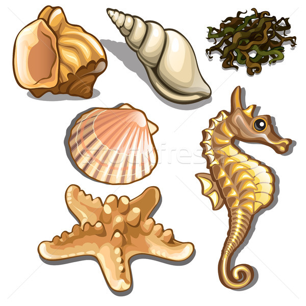 набор морских животных изолированный белый морепродуктов вектора Сток-фото © Lady-Luck