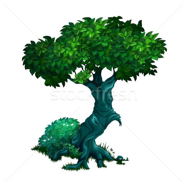Lonely old deciduous tree isolated on white background. Vector cartoon close-up illustration. Stock photo © Lady-Luck