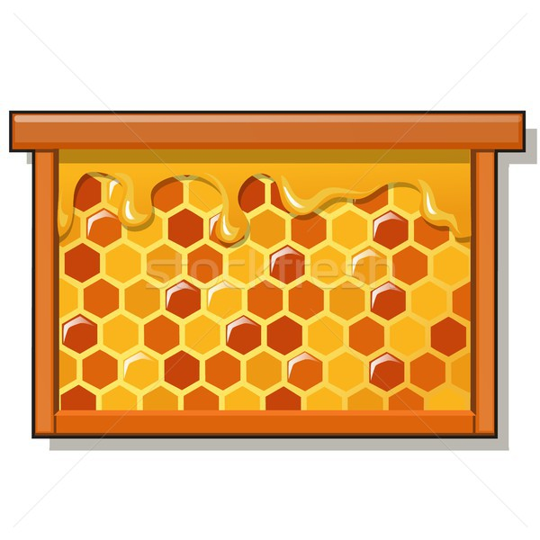 Wooden frame with sweet golden honeycomb with honey isolated on white background. Natural healthy fo Stock photo © Lady-Luck