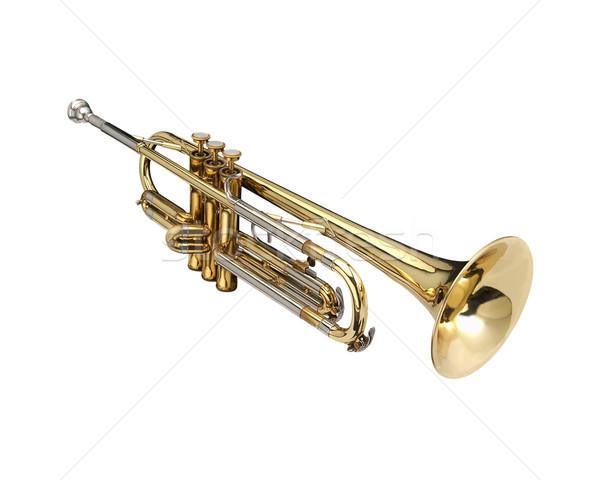 Trumpet Stock photo © lalito
