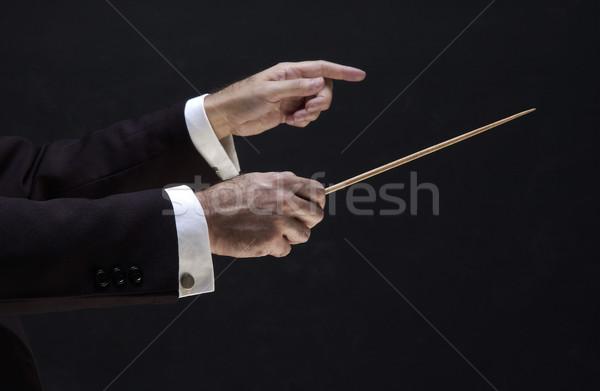 Handen directeur muziek leraar silhouet manager Stockfoto © lalito
