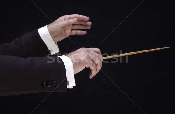 Hände Direktor Musik Lehrer Silhouette Manager Stock foto © lalito