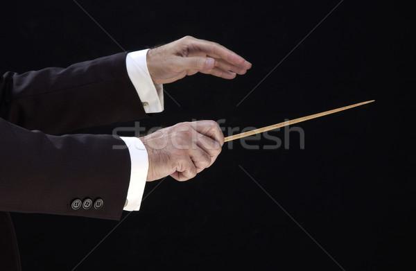 Eller yönetmen müzik öğretmen siluet müdür Stok fotoğraf © lalito