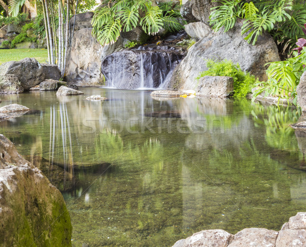 Waterfall Stock photo © LAMeeks