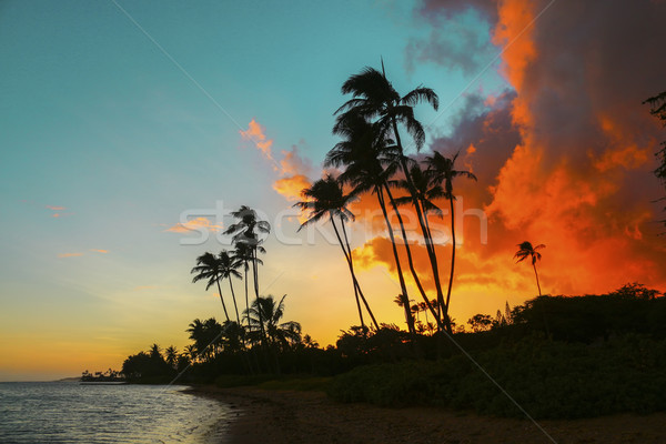 Kawaikui Sunset Stock photo © LAMeeks