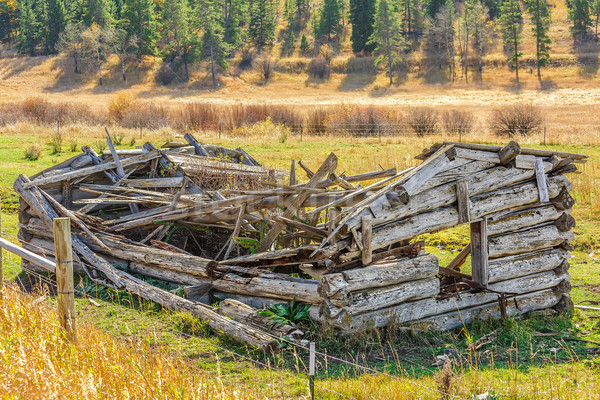 Dilapidated Log House Stock photo © LAMeeks