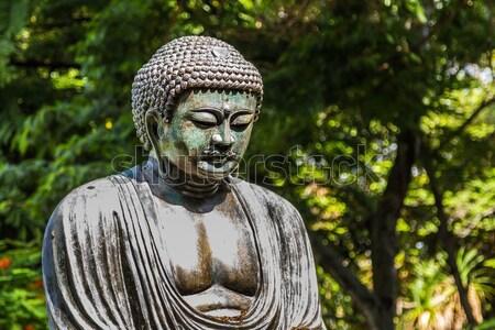 Buda botânico jardins azul parque Foto stock © LAMeeks