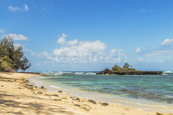 Waiale'e Beach Stock photo © LAMeeks