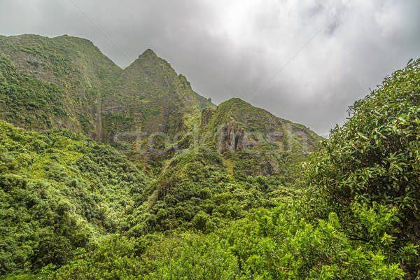 Iao Valley Stock photo © LAMeeks