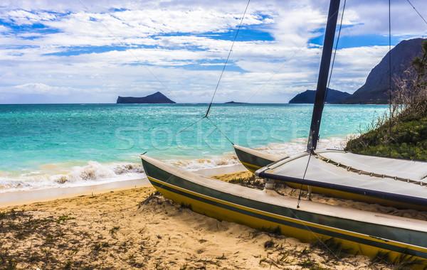 Catamarán playa hermosa isla conejo tortuga Foto stock © LAMeeks