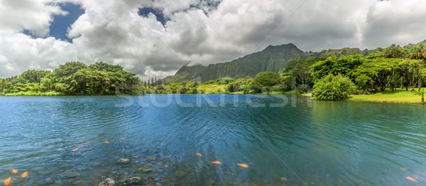Meer panorama panoramisch botanisch tuinen Stockfoto © LAMeeks