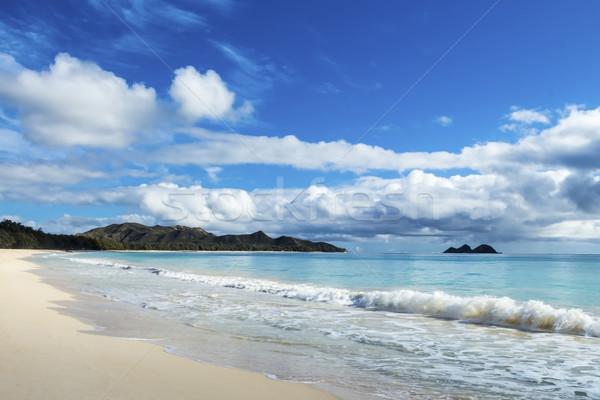 Waimanalo and Bellows Beach Stock photo © LAMeeks