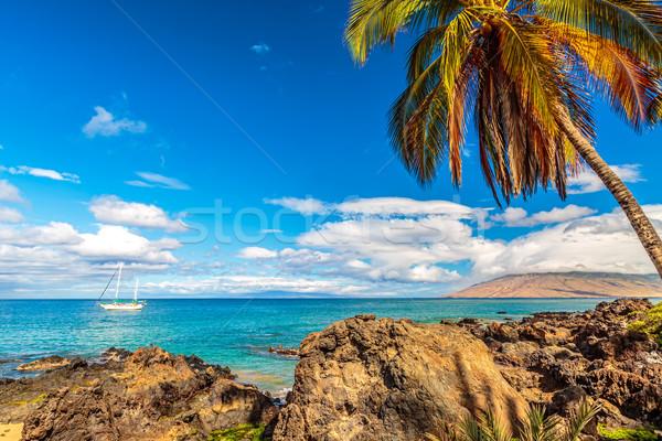 Zeilboot af kust strand hemel water Stockfoto © LAMeeks