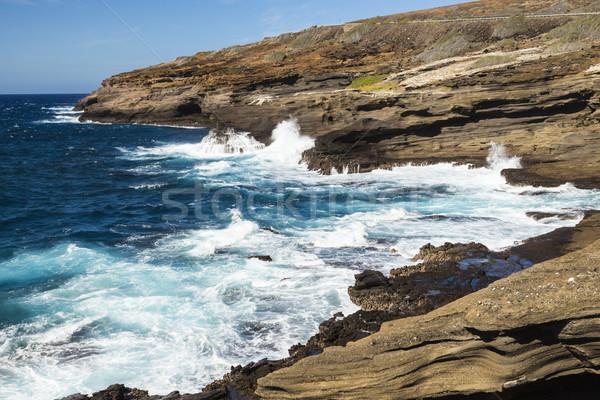Kustlijn mooie dramatisch oceaan Stockfoto © LAMeeks