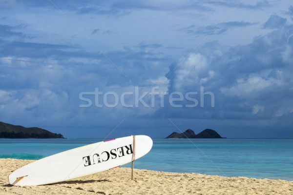 Rescue Board Stock photo © LAMeeks
