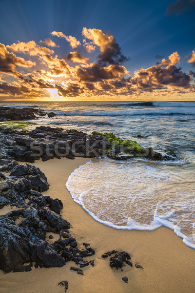 Sandy Beach Sunrise Stock photo © LAMeeks
