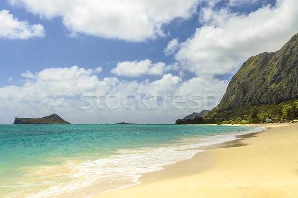 Strand naar zuiden punt eiland konijn Stockfoto © LAMeeks