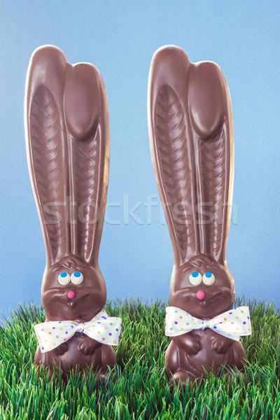 Chocolate Bunnies In Grass Stock photo © LAMeeks