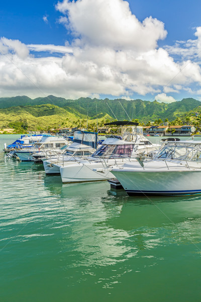 Koko Marina and the Koolau Mountains Stock photo © LAMeeks