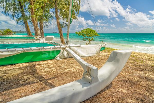 Catamarán sesión costa playa cielo agua Foto stock © LAMeeks