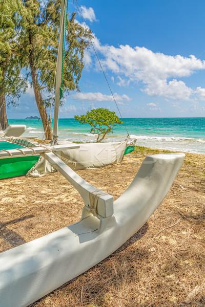 Catamarán sesión costa playa cielo árboles Foto stock © LAMeeks