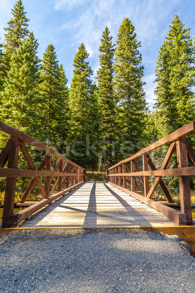 Hyalite Creek Bridge Stock photo © LAMeeks
