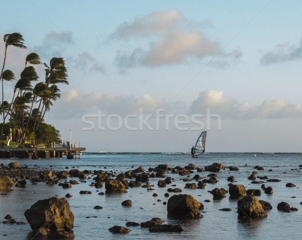 Windsurfer at Sunset Stock photo © LAMeeks