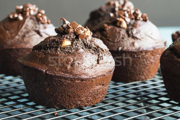 Chocolate Muffin Stock photo © LAMeeks