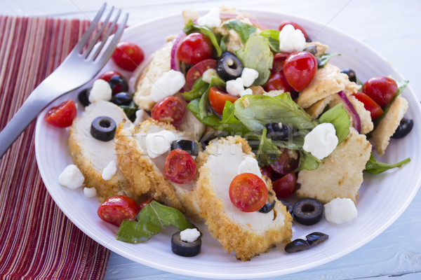 Middle Eastern Bread Salad with Chicken Stock photo © LAMeeks