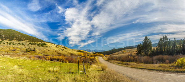 Country Dirt Road Stock photo © LAMeeks
