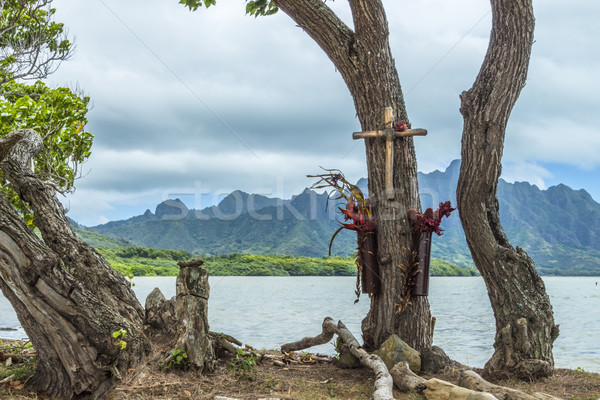 Tree Memorial Stock photo © LAMeeks