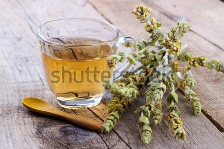 травяной горные чай травяной чай цветы Сток-фото © Lana_M