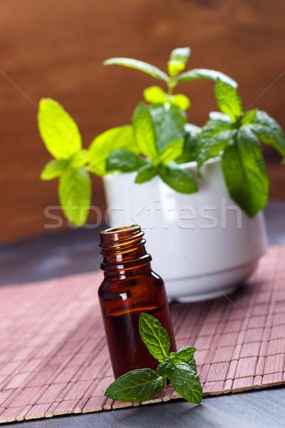 Menta illóolaj kicsi üveg aromaterápia fából készült Stock fotó © Lana_M