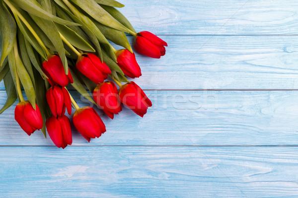красный тюльпаны деревянный стол синий Top мнение Сток-фото © Lana_M