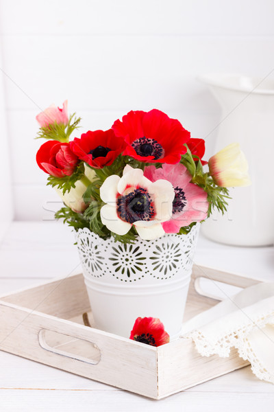 White and red anemone flowers Stock photo © Lana_M