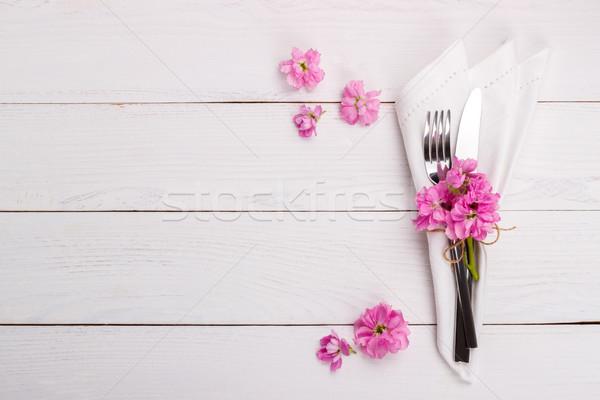 Stok fotoğraf: Bahar · yaz · tablo · pembe · çiçekler · tatil