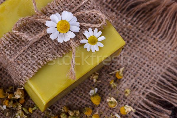 ручной работы мыло ромашка высушите цветы избирательный подход Сток-фото © Lana_M
