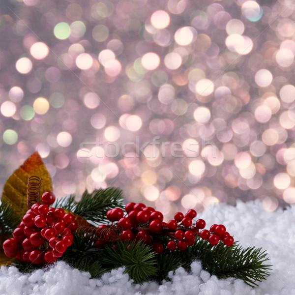Рождества Новый год филиала красный Ягоды снега Сток-фото © Lana_M