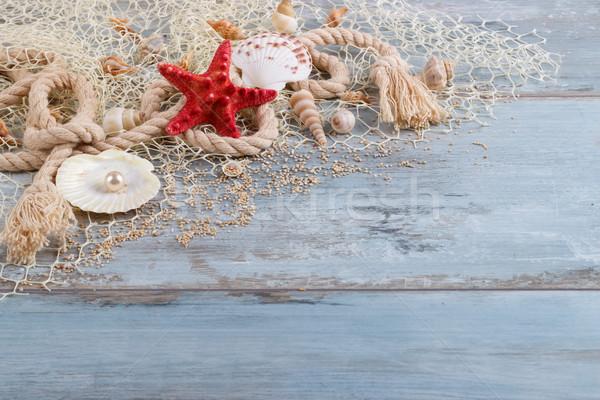 Mar conchas fishnet férias de verão sol Foto stock © Lana_M