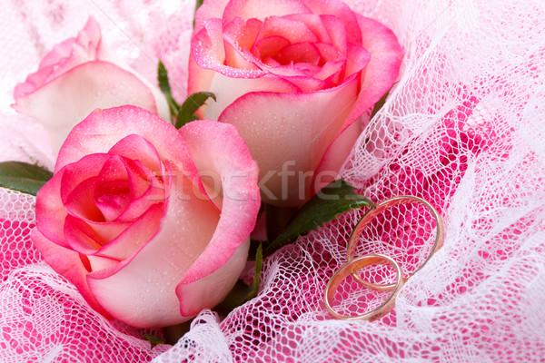 Rozen twee trouwringen roze macro Stockfoto © Lana_M