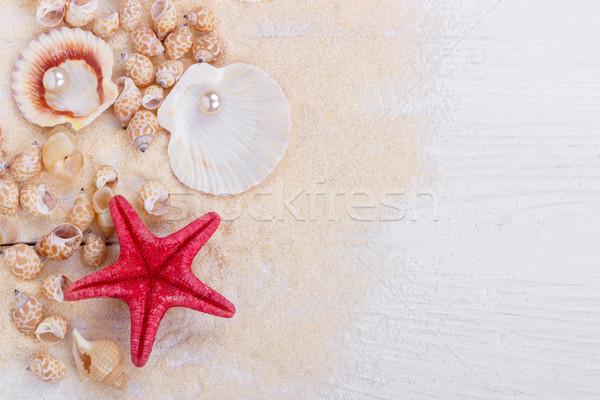 sea shells on sand Stock photo © Lana_M