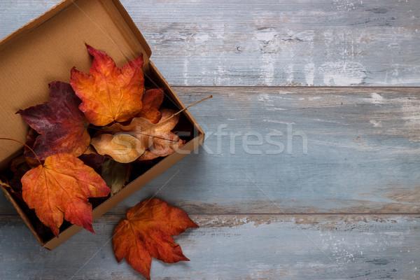 Aszalt őszi levelek klasszikus doboz kék rusztikus Stock fotó © Lana_M