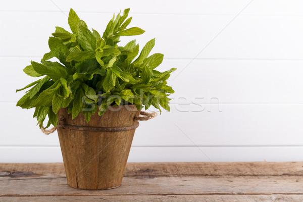 Mint in a bucket Stock photo © Lana_M