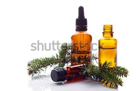 Fir essential oil Stock photo © Lana_M
